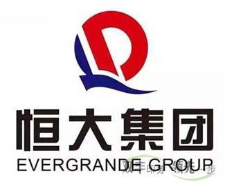 河南12博备用网站厂合作伙伴恒大集团